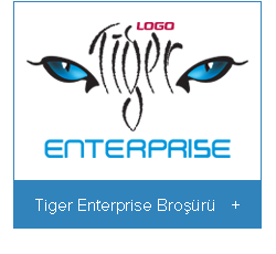 logo-tiger-3-enterprise